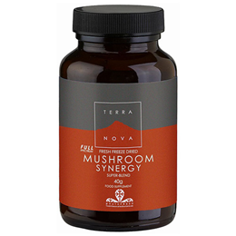 TERRANOVA Mushroom Synergy - Super-Blend Powder - 40g