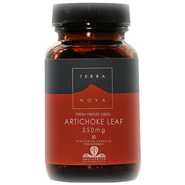 TERRANOVA Artichoke Leaf 250mg - 50 Vegicaps - Best before date is 30th June 2019