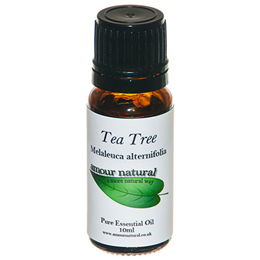 Amour Natural Tea Tree Pure Essential Oil - 10ml