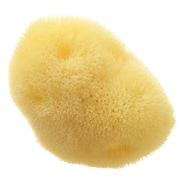 Hydrea London Fina Silk Sea Sponge