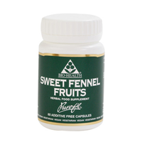 Sweet Fennel Fruits - 60 Capsules