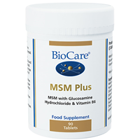 MSM Plus - With Glucosamine - 90 Tablets