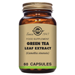 Solgar Green Tea Leaf Extract - 60 Vegicaps