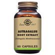 Solgar Astragalus Root Extract - 60 Vegicaps