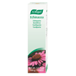 A Vogel Echinacea Toothpaste - 100g