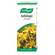 A Vogel Solidago Complex - Tincture - 50ml