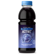 BlueberryActive Concentrate - Blueberry - 473ml